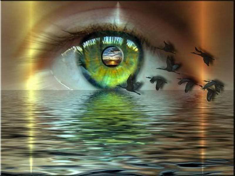 Olhos Verdes Esmeralda | Matizes das íris de Ana (Presente de Virgílio Siqueira)