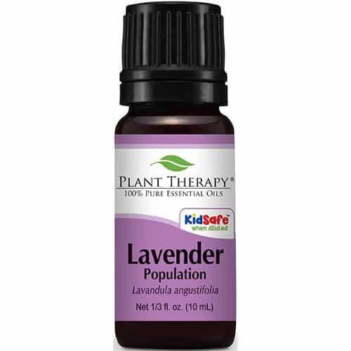 plant therapy 100% pure essential oil lavender