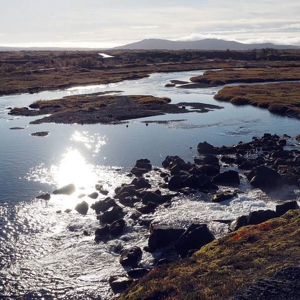 Positive Vibes Only Island Herbst Sonnenschein Horizont