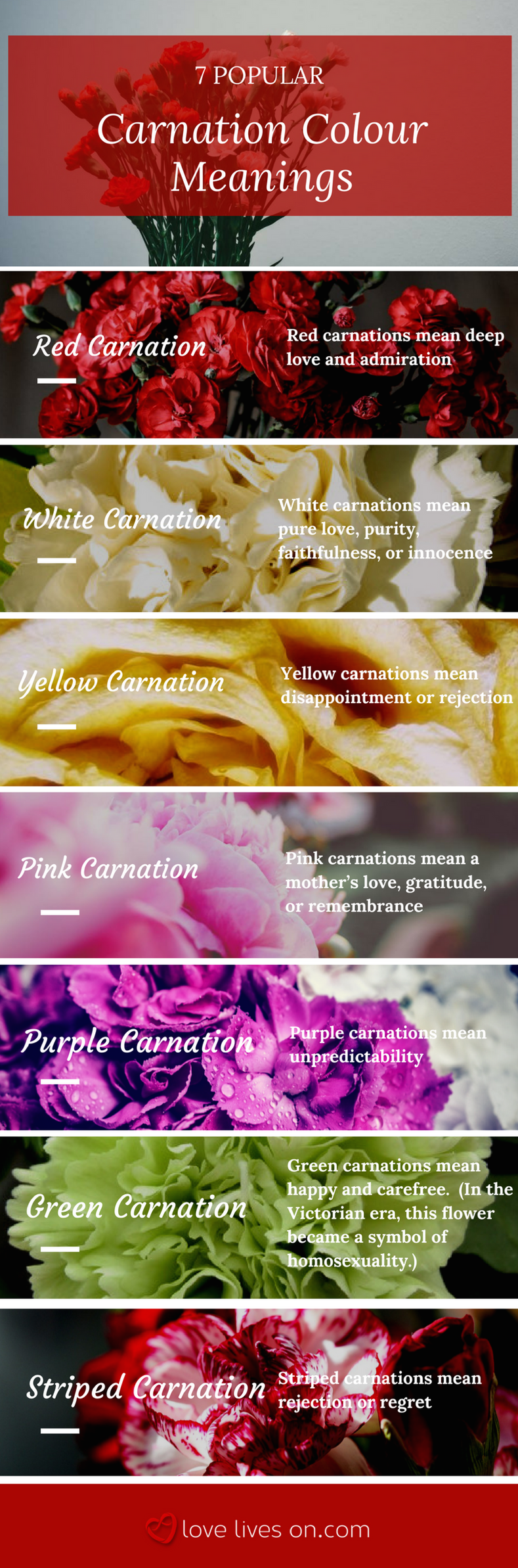 Meaning of flower colors for a funeral coloringsite 10 best funeral flowers flower meanings arrangements and izmirmasajfo