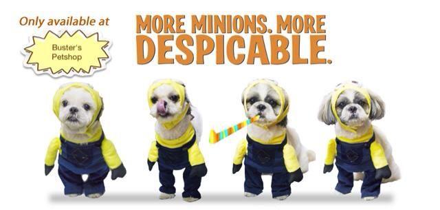 Minion Dog Costume For Sale More Minions More Despicable