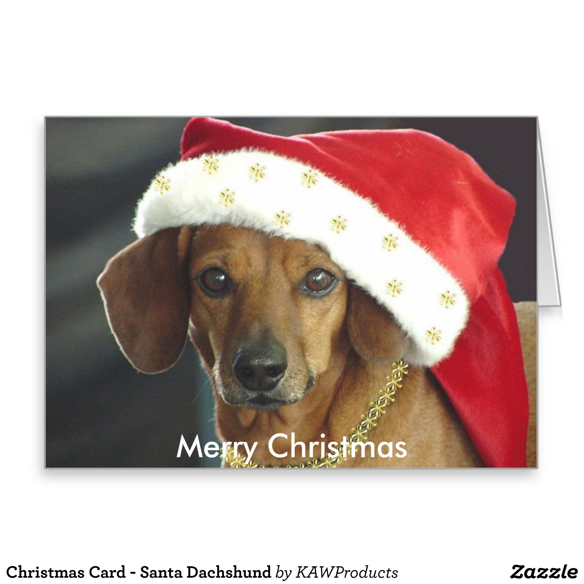 Christmas card santa dachshund dachshund
