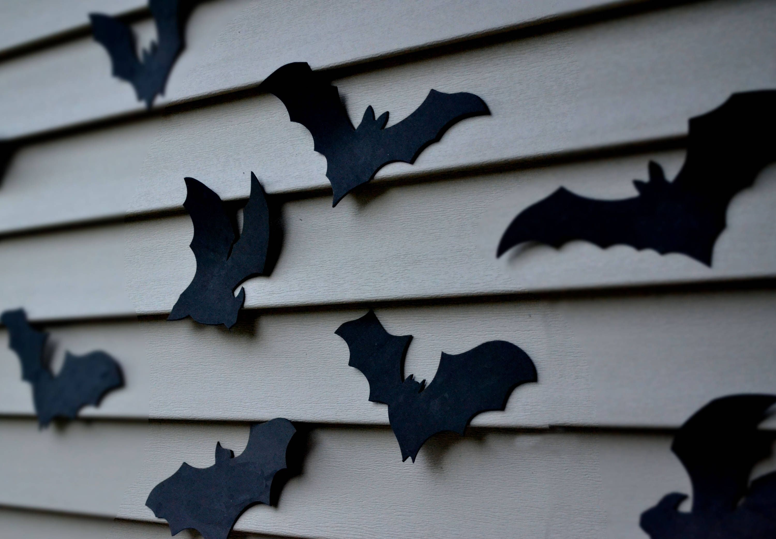 Bat Halloween Decoration 16 Bats Reusable Wall Decoration
