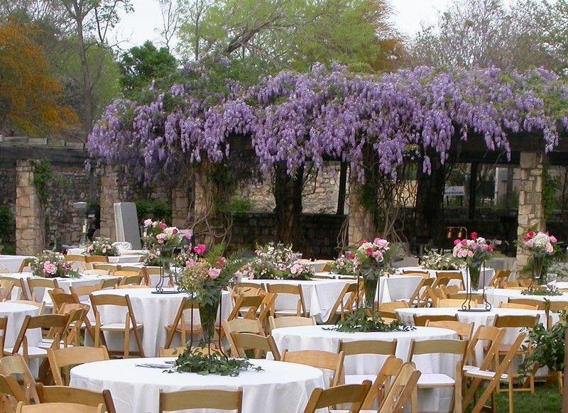 d458ef6b08579560175e3c5bb9e7b5a3 - San Antonio Botanical Gardens Wedding Price