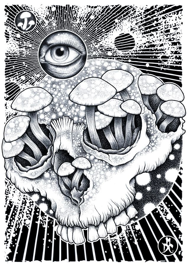 Shrooms by ~monkeydeathcult on deviantART | dibujos | Pinterest ...