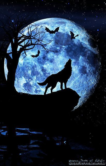 Photo of This artwork shows composition. It shows a wolf howling at the moon, a …