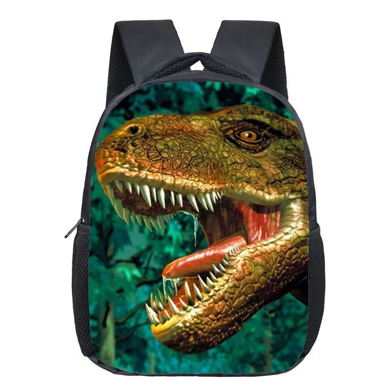 Dinosaur Magic Dragon Backpack For Kids Animals Backpacks Kids Schoolbags  Boys Girls School Bags Daily Backpack e851850bc9