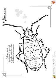 Gendarmes insectes recherche google gendarmes insectes - Coloriage gendarme ...