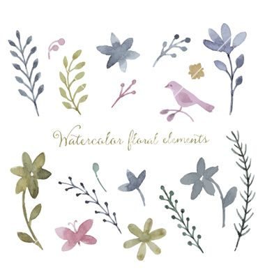 Watercolor set vector flowers - by meggichka on VectorStock®