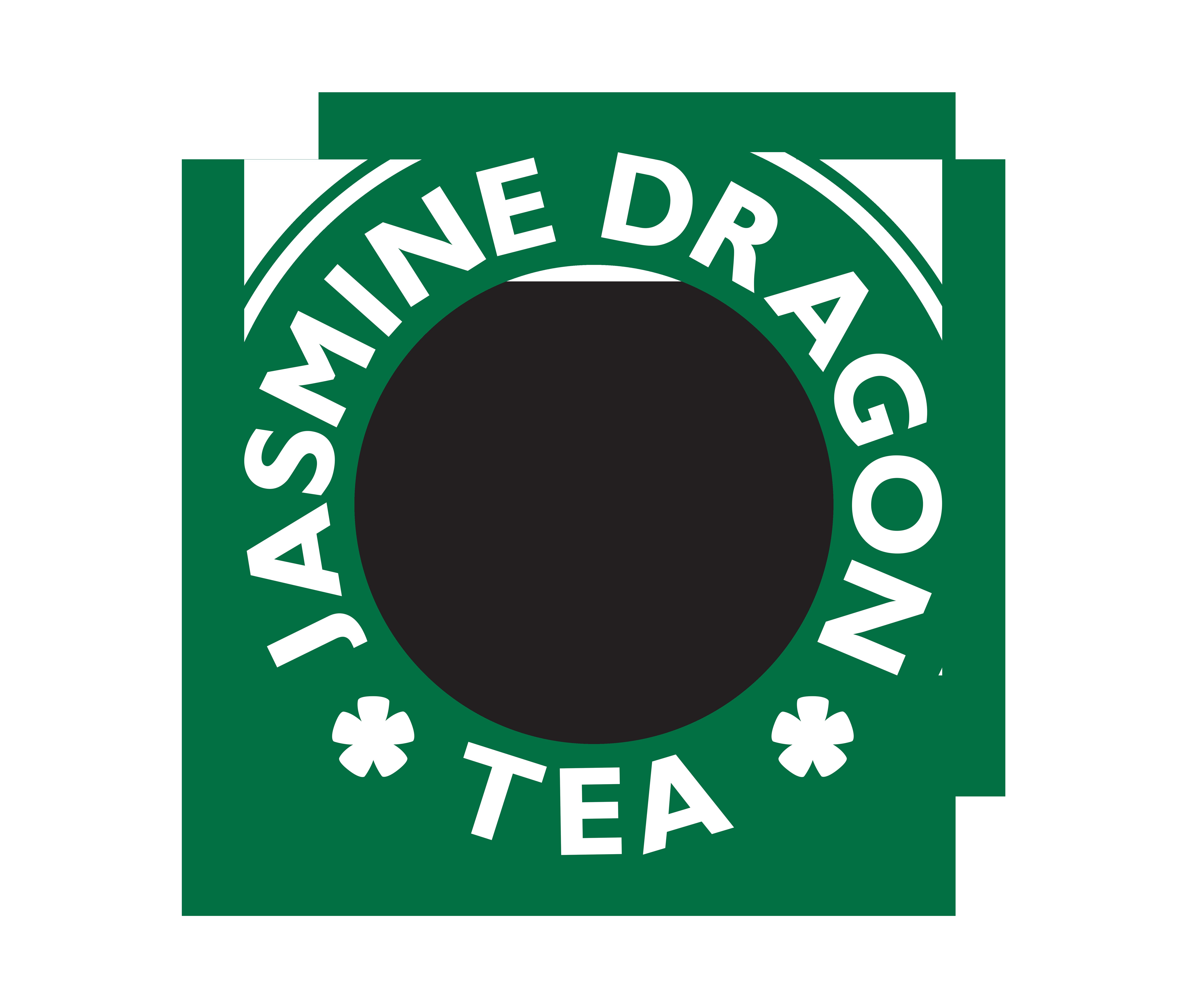 Avatar The Last Airbender: Jasmine Dragon