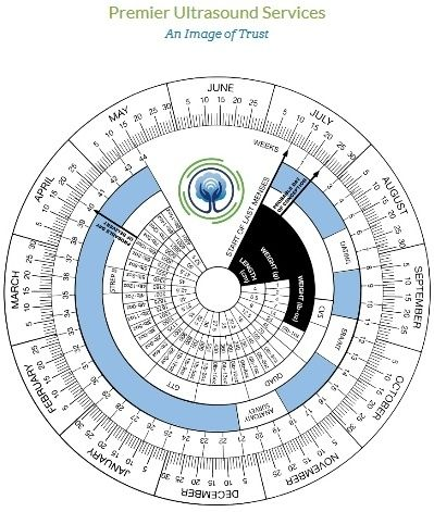 Estimate your date of delivery with our Dynamic Pregnancy Wheel. An ...