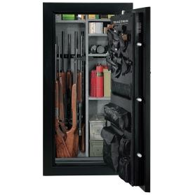 Dicks gun safes