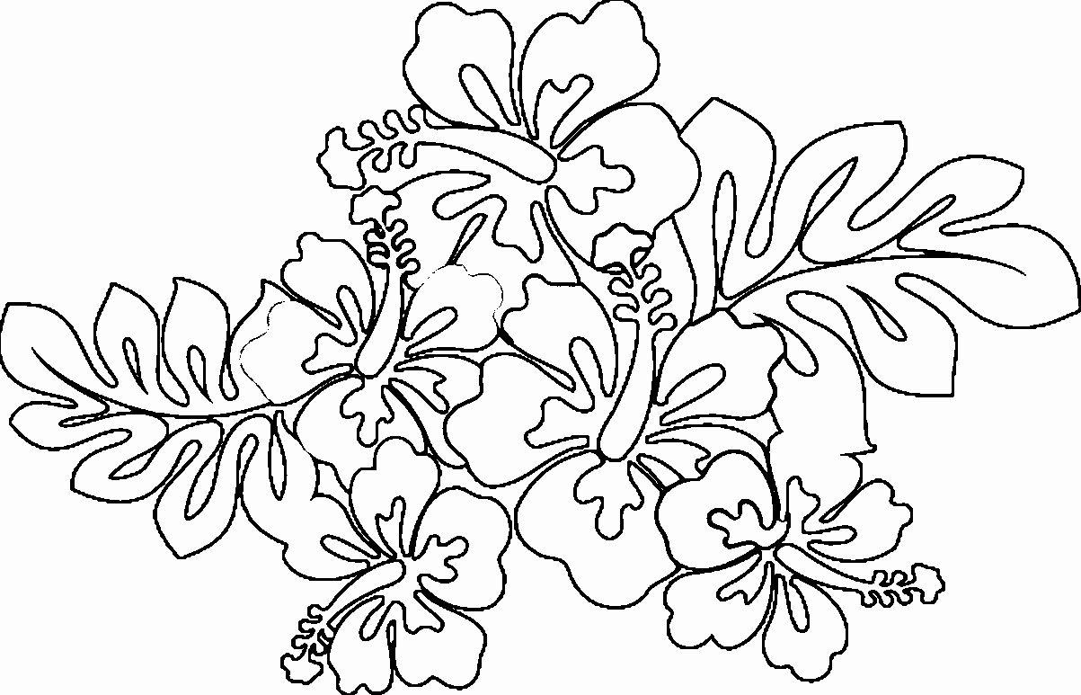 Hawaiian Flower Coloring Page New Hawaiian Lei Drawing At Getdrawings Printable Flower Coloring Pages Cute Coloring Pages Free Coloring Pages