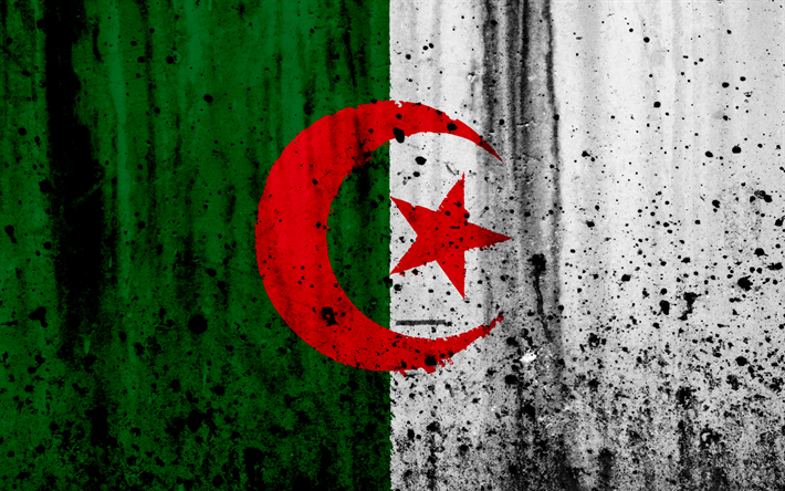 Download Wallpapers Algerian Flag 4k Grunge Flag Of Algeria Africa Algeria National Symbols Algeria National Flag Besthqwallpapers Com Algerian Flag Algeria Flag Algerian