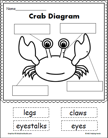 Crab Diagram Cut And Paste Diagram Ocean And Ocean Themes