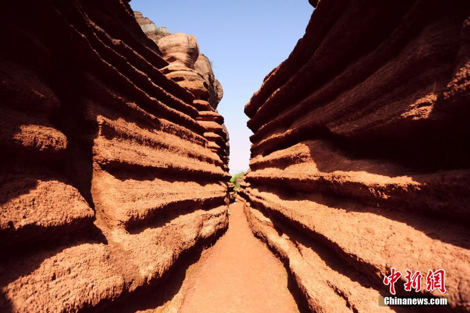 A large area of red rock forest is found in Baizhu village, 50 kilometers away from Youyang county, Chongqing city. Relevant authorities have taken measures to protect the forest. So far, nearly 66 hectares of red rock forest have been excavated, attracting many tourists to the site http://www.chinatraveltourismnews.com/2015/04/large-area-of-red-rock-forest-found-in.html