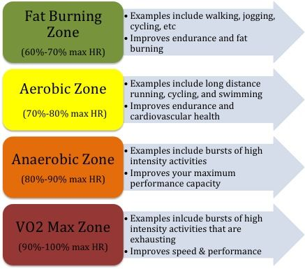 determine fat burning heart rate