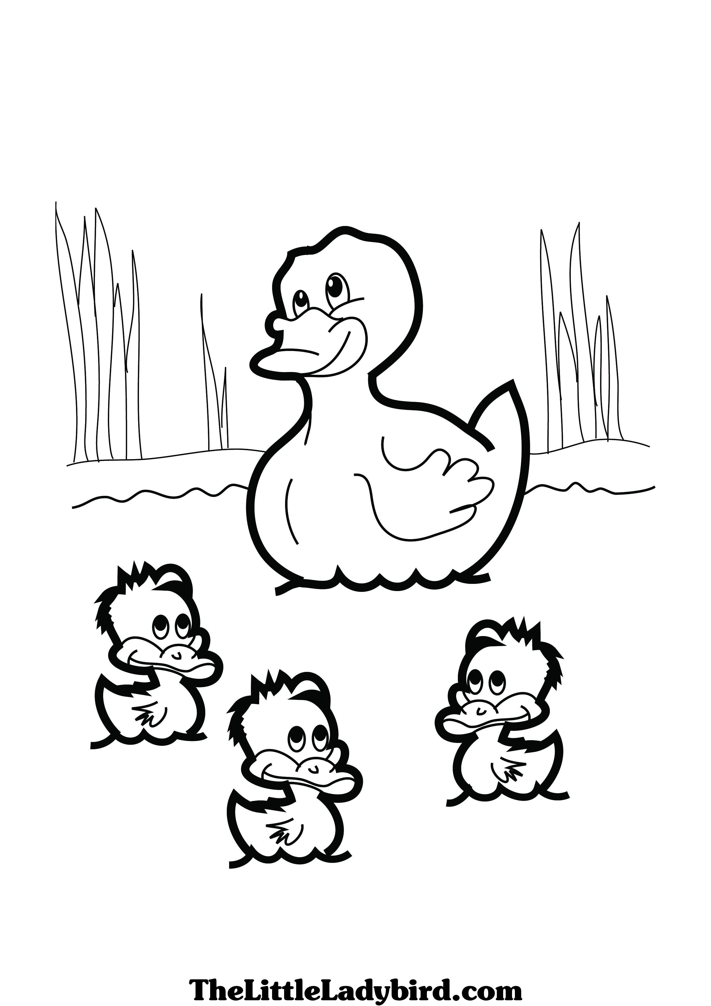 duckling and coloring pages - photo#45