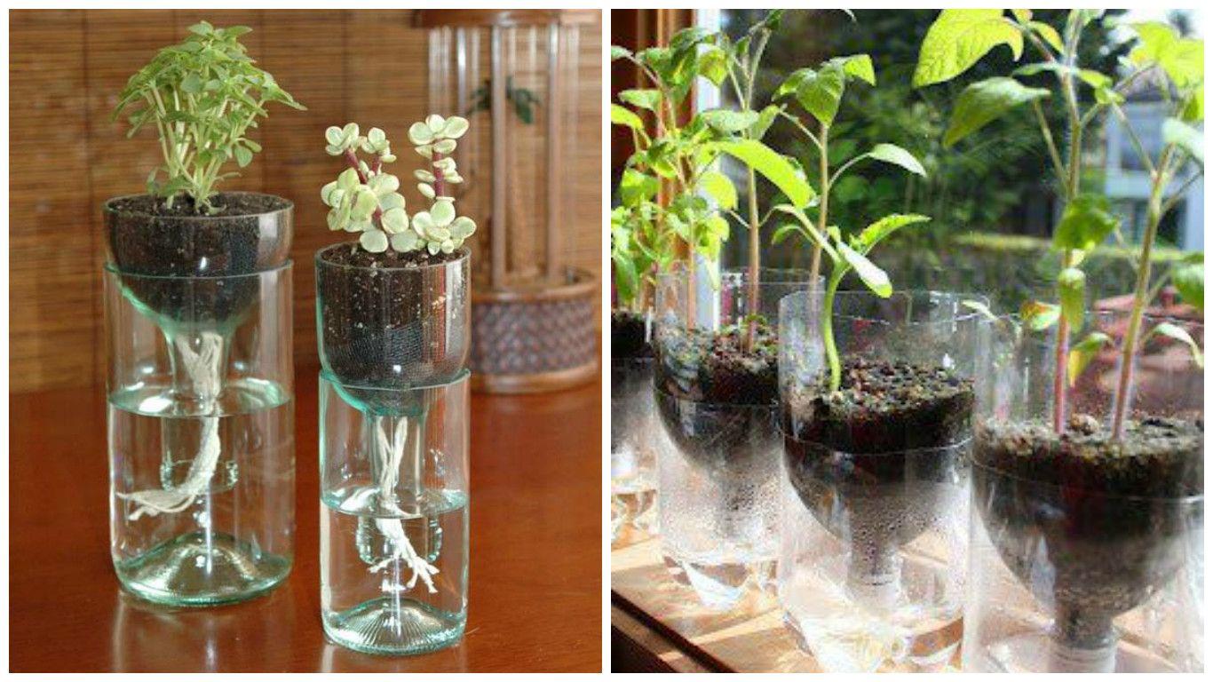 Despu s de ver esta fant stica idea para hacer macetas con for Como decorar un jardin con macetas