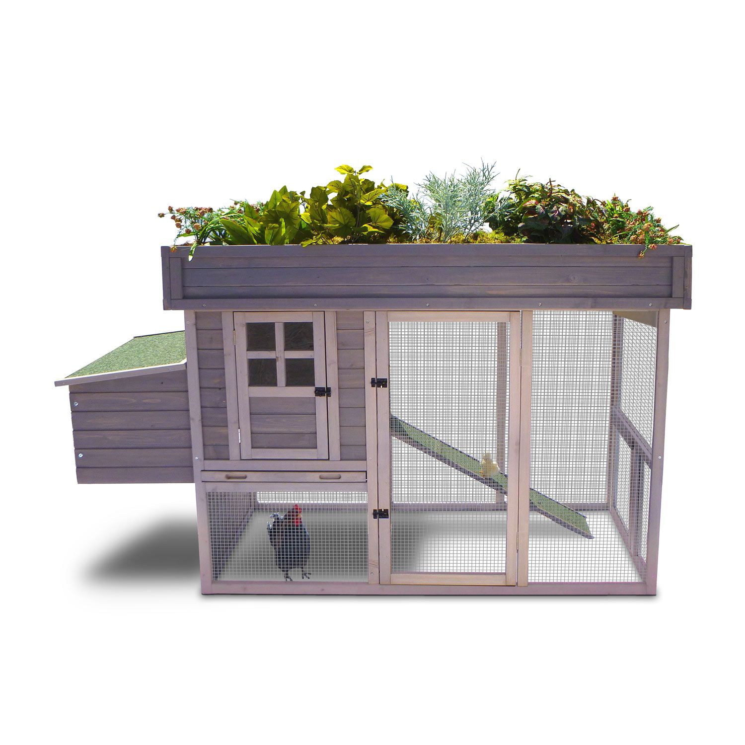 precision pet garden top chicken coop holds 4 chickens 400 would