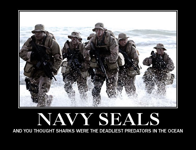 Navy SEALS What is there not to like about these brave boys and girls?  Just be proud of our military and our nation and say thanks to all those who have given or are still giving their all to protect us.