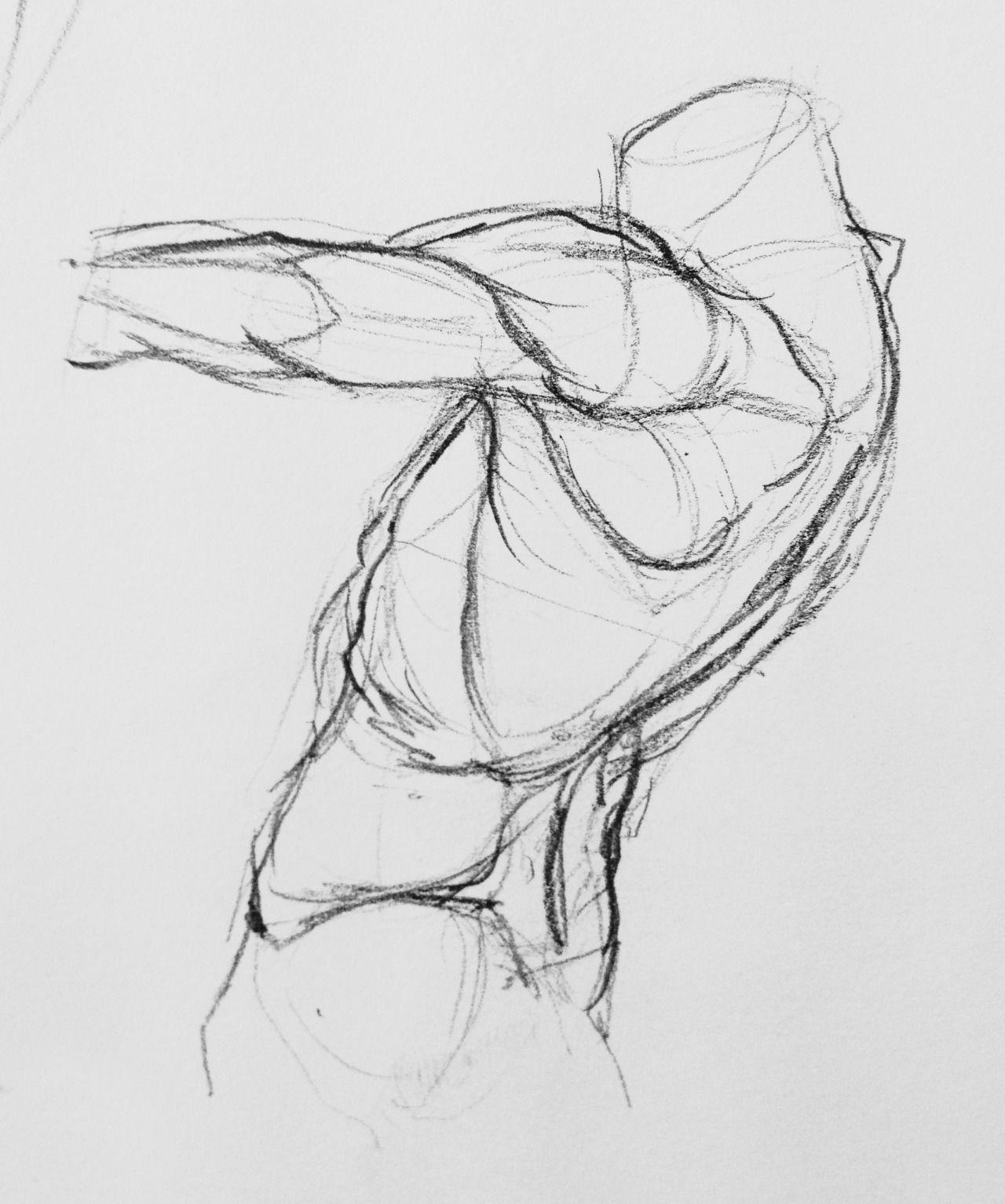 Figure Drawing Anatomy Anatomy A Figure Drawing Pinterest