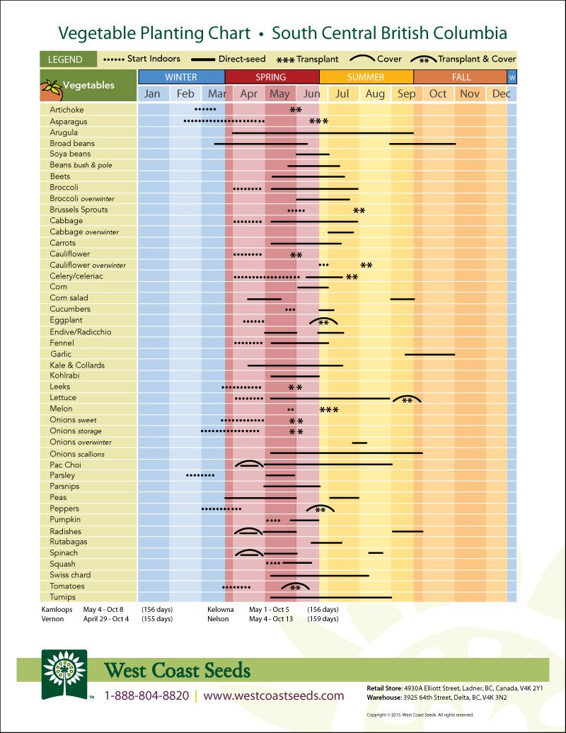 Free garden planting charts super awesome also how to plant your fall and winter gardening pinterest rh