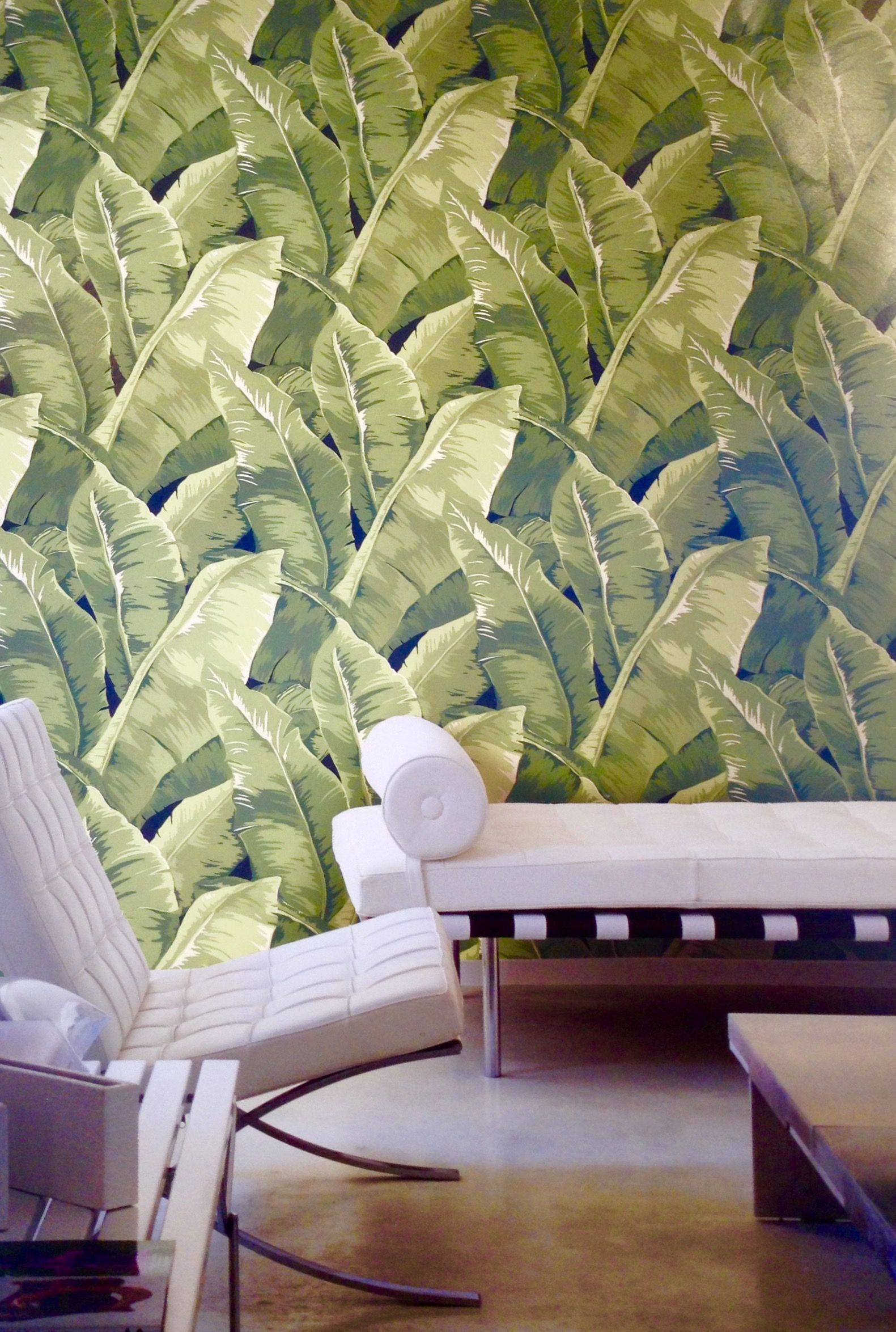 Charleston Wallpaper JB50700 From Jaima Brown