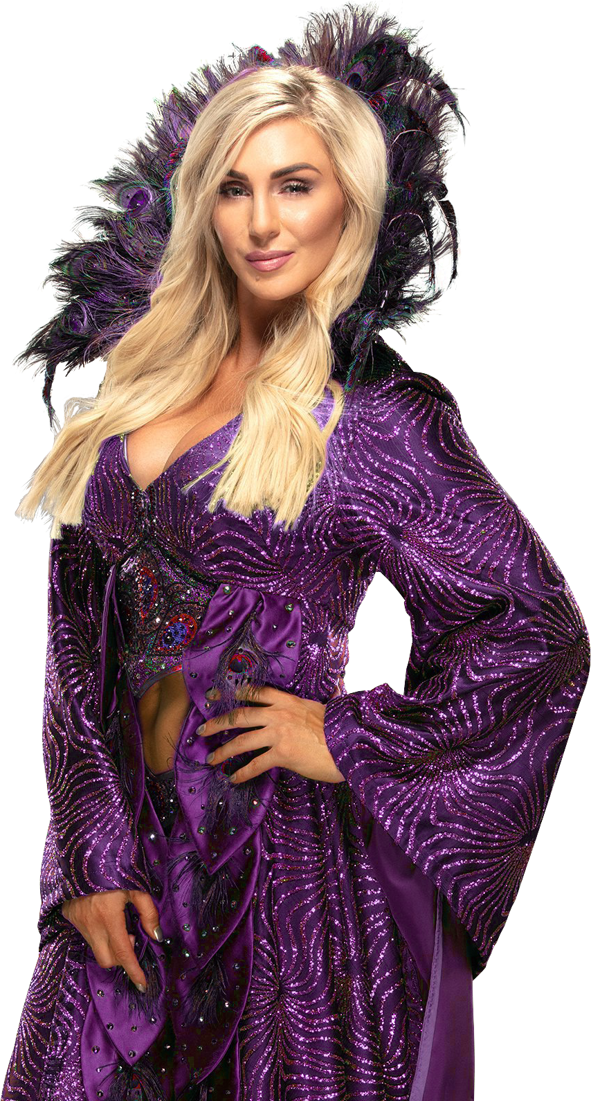 Pin On The Women Of The Wwe