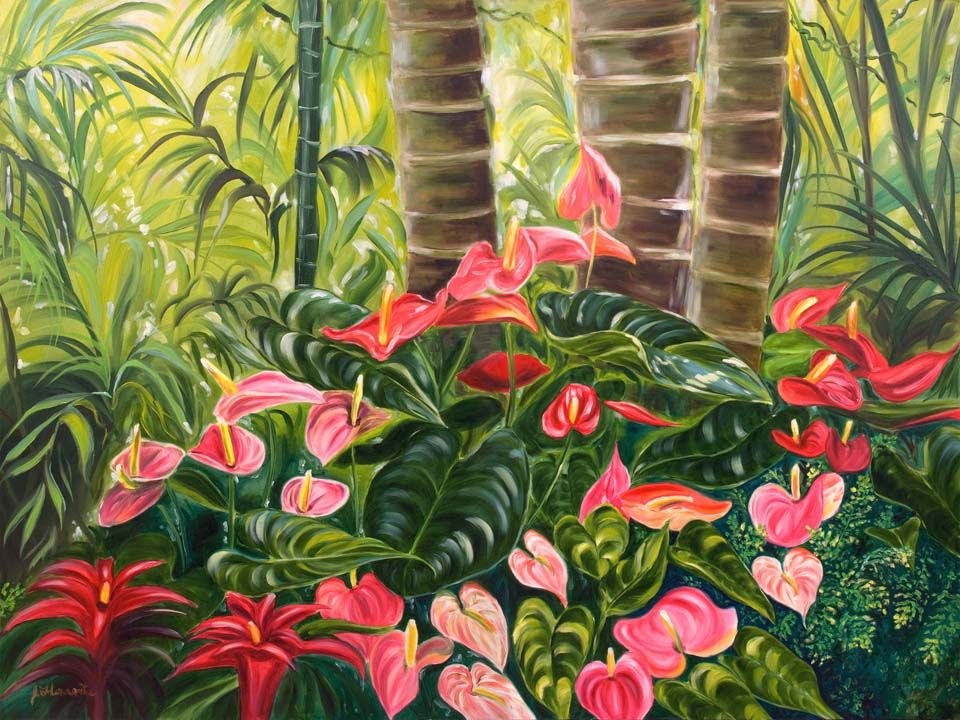 Floravita-Tropical-Flower-Hawaii-Anthurium-Jungle ...