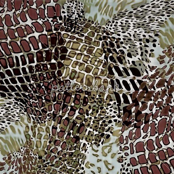 Leopard Skins Brown Animals Skins Animals Prints E
