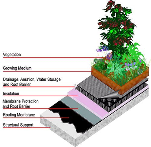 What Is An Intensive Green Roof Green Roof System Green Roof Green Roof Design