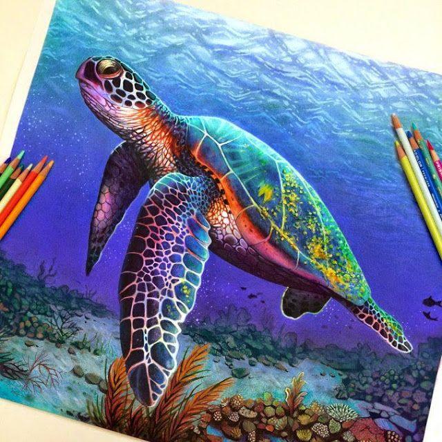 Ilustración Realista Con Lápices De Colores Prismacolor Animals