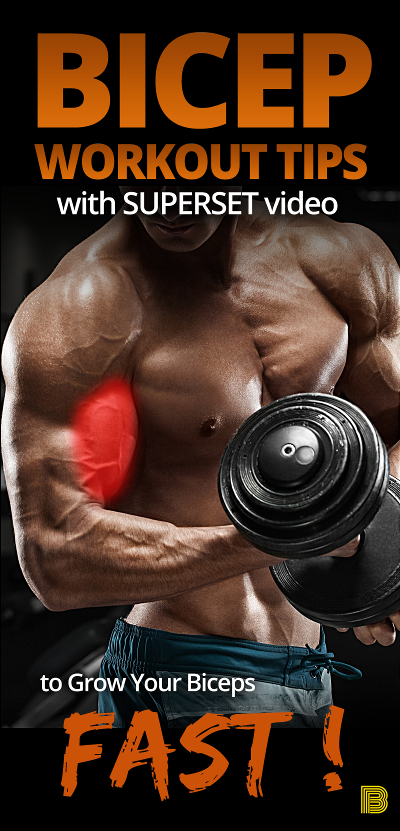 Best Bicep Workout Tips with Superset Video