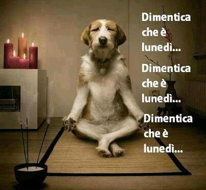 frasi simpatiche yoga