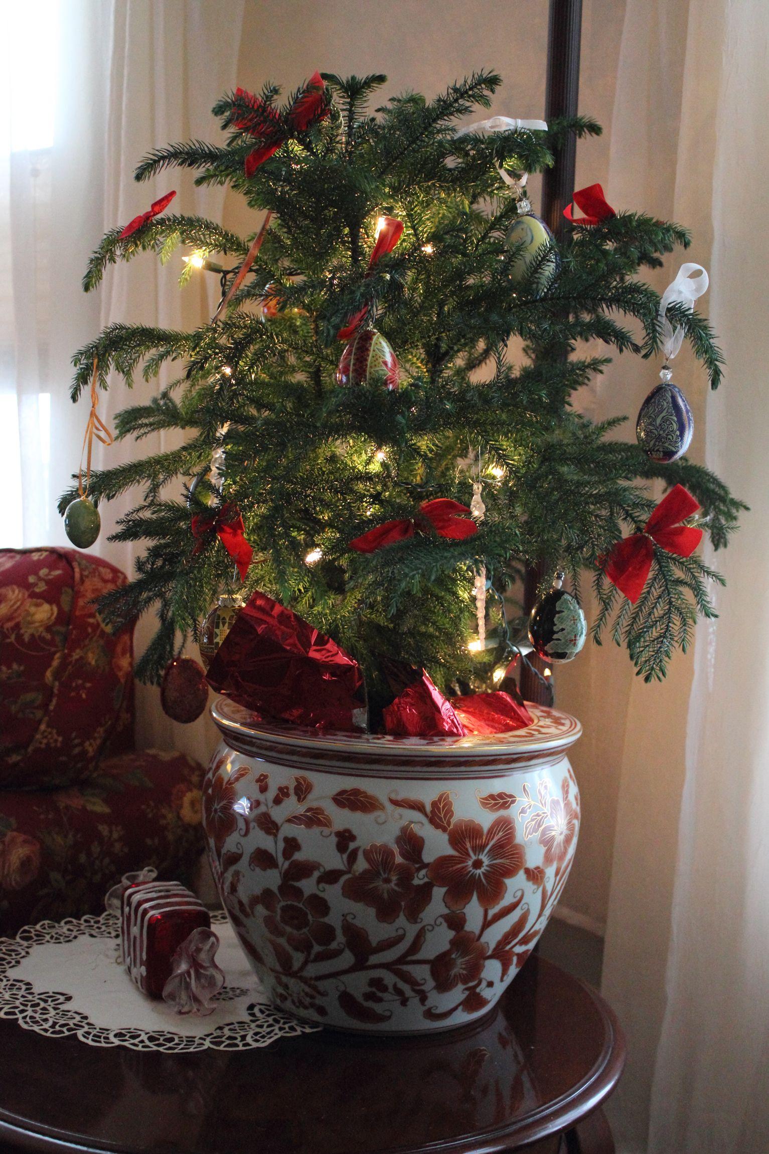 Norfolk Pine Christmas Tree. Handmade pysanky batik ornaments ...