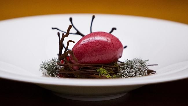 Intricate The Chocolate Forest Floor Dish From Sepia