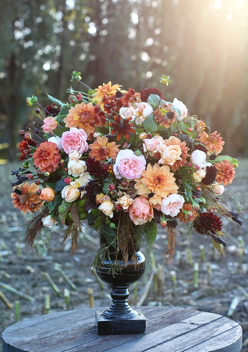 Farmwife flowers october dahlias roses httppinterest farmwife flowers october dahlias roses httppinterest izmirmasajfo