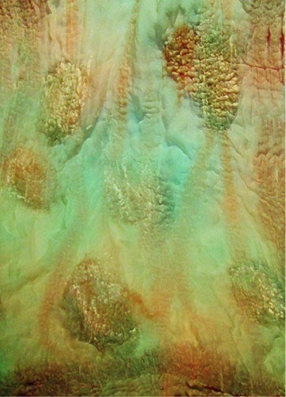 Asociación Creadores Textiles Madrid   Taller de fieltro nuno sobre seda pintada o estampada