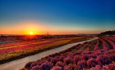 Beautiful & warm Luxury condo - HomeAway Carlsbad
