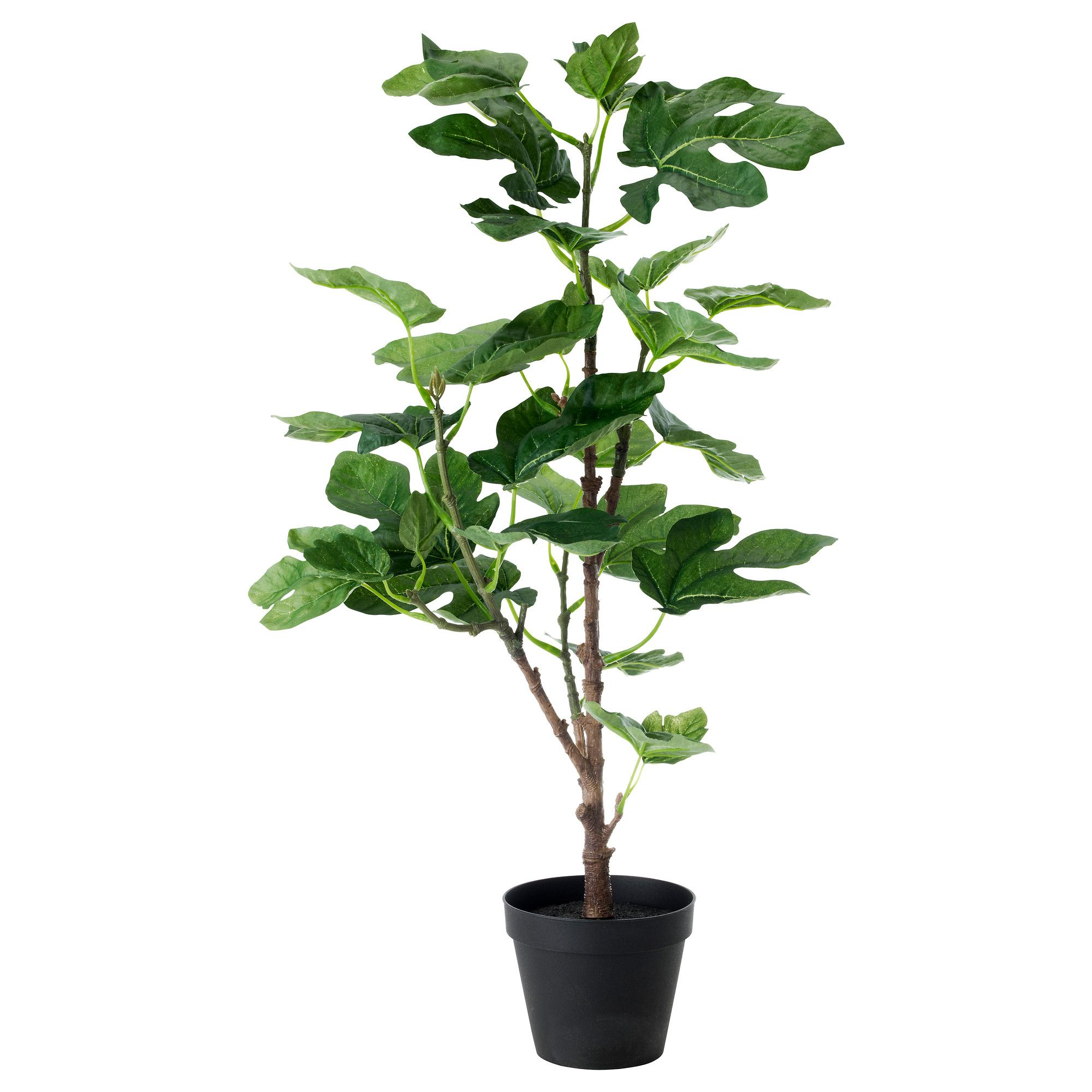 Lifelike Plants Fejka Artificial Potted Plant Ikea 14 99 Backyard