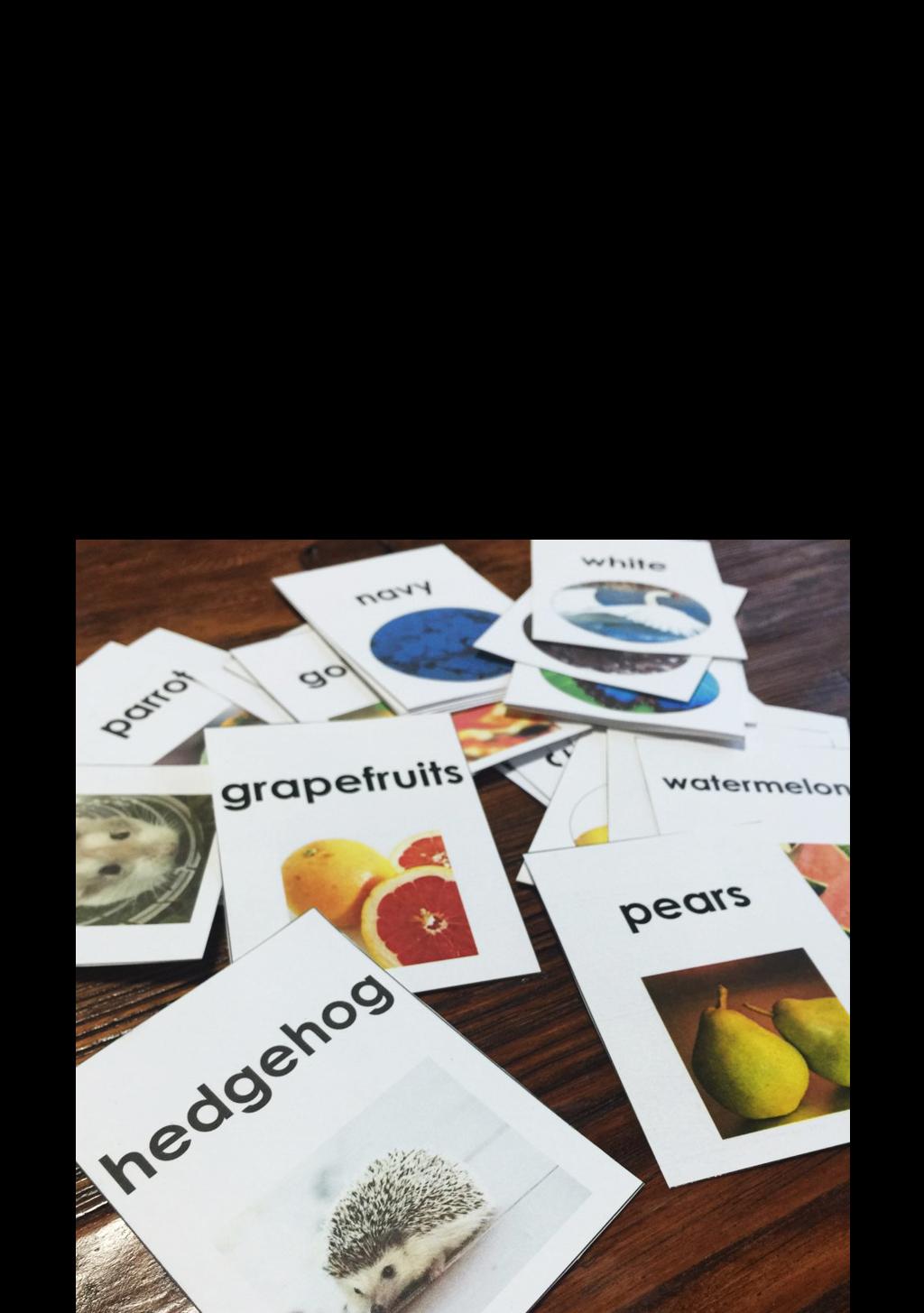 Flashcards Sorting Activity Esol Vocabulary Wordwork
