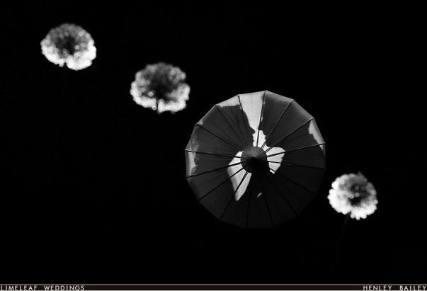 Wedding Couple Photography: umbrella silhouette & dandelion clock creative flash lighting