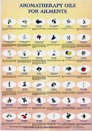 aromatherapy chart - Google Search