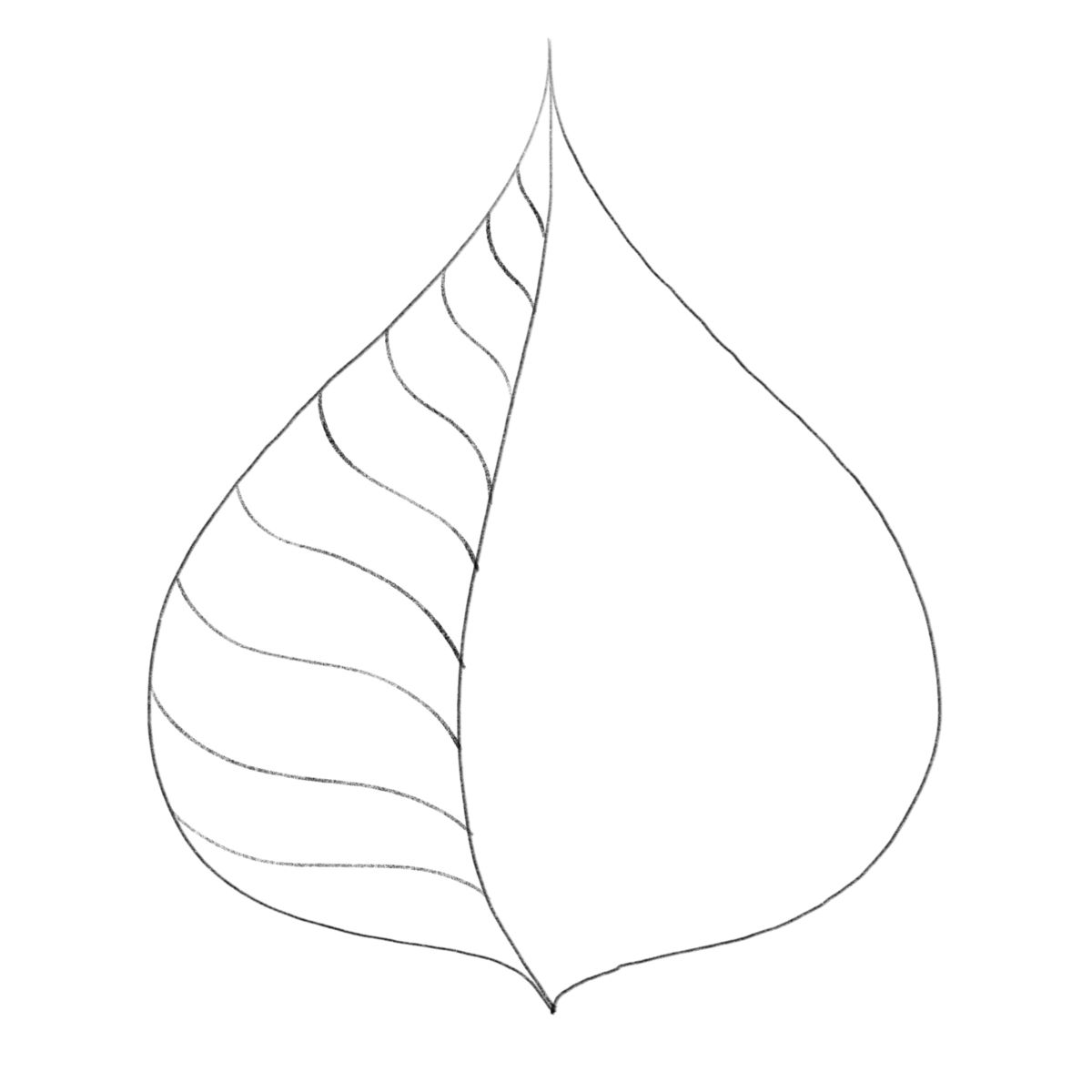 Drawing Leaves Easily Using Simple Shapes With Images