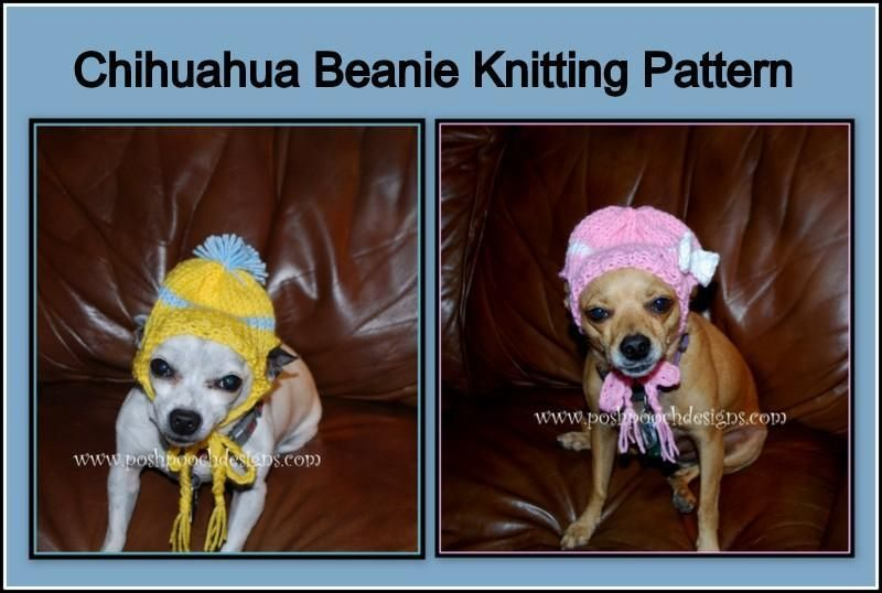 6) Name   Knitting   Chihuahua Beanie Hat For Small Dogs  e75890f06a8