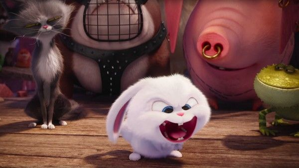 The Secret Life Of Pets In Theaters And Reald 3d July 8 Pets Movie Cute Cartoon Wallpapers Cute Bunny Cartoon