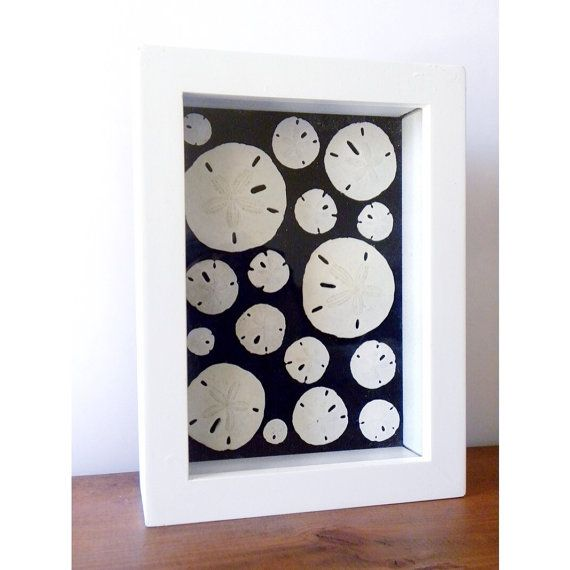 Sanddollar Shadow Box White And Black By Georgiepearldesigns