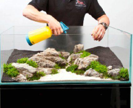 planted fish tank pinterest aquarium unter wasser und pflanzen. Black Bedroom Furniture Sets. Home Design Ideas