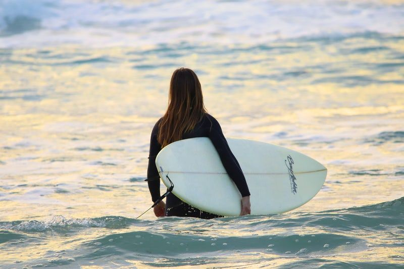 Wetsuit Pictures Hd Download Free Images On Unsplash Surfing
